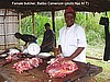 Female butcher, Batibo, Cameroon