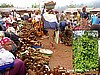 Yams in Guzang, Cameroon (Photo: Njei M.T)